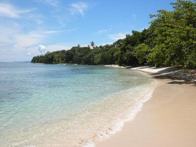 Panama   Beach and Ocean